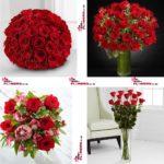 سفارش و تحویل گل رز در تورنتو کانادا