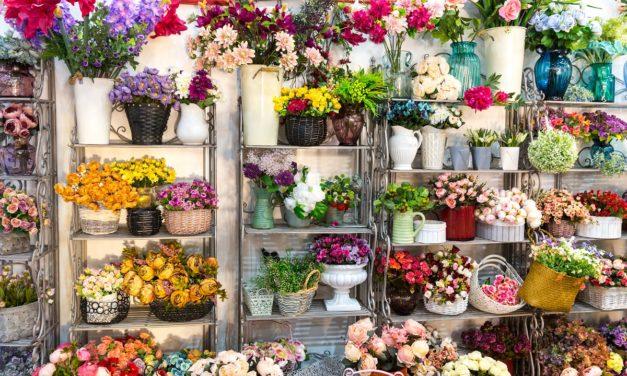 گل های زیبا و معنی آن ها