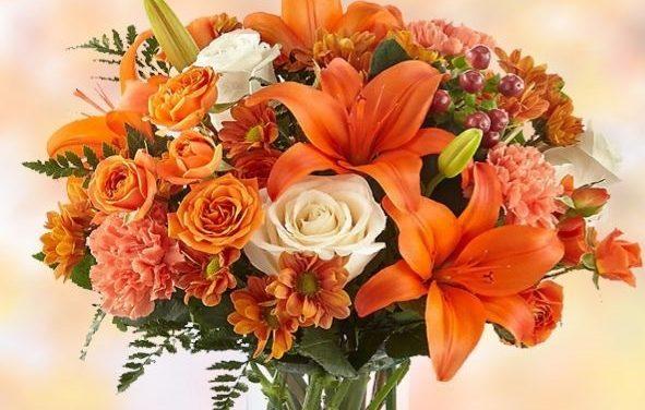تخفیف ده درصدی گل های پاییزی